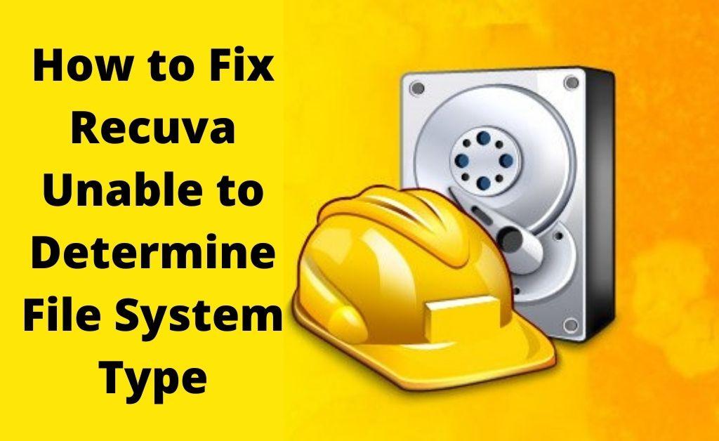 recuva unable to determine file system type